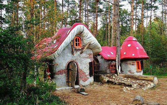 Building off the Grid: Mushroom House <br><h3>DIY, Sharp Entertainment</h3>
